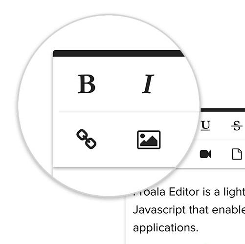 Froala WYSIWYG HTML Editor 2016 - 2017