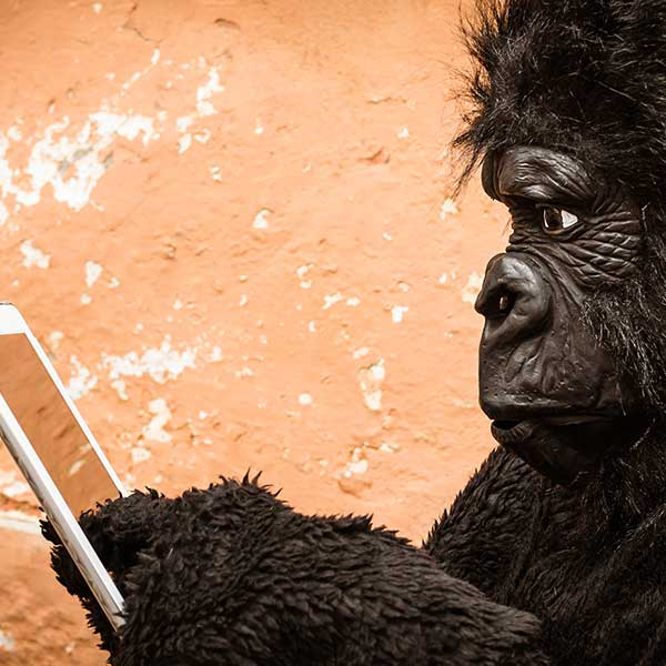 A man wearing a gorilla costume pointing at a glass tablet against a weathered wall.