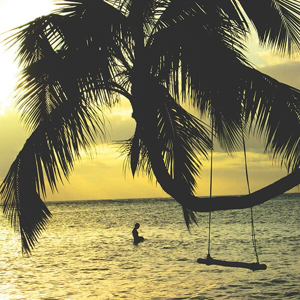 A palm tree with a wooden swing and a man swimming above the ocean.